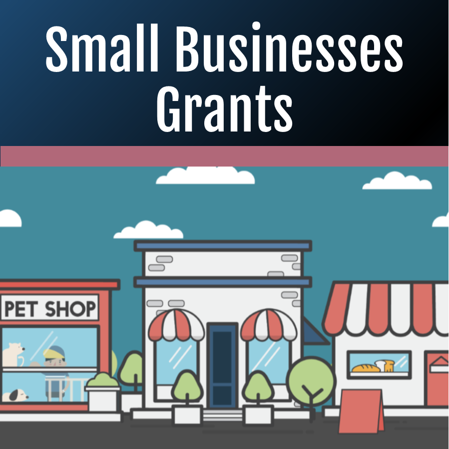 Small Business Grants News Flash Tile