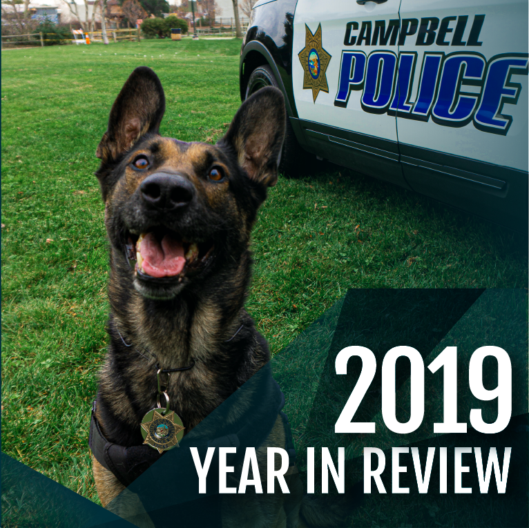 2019 Year in Review with a photo of K9 Lucas.