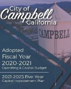 Adopted - 2021 Budget